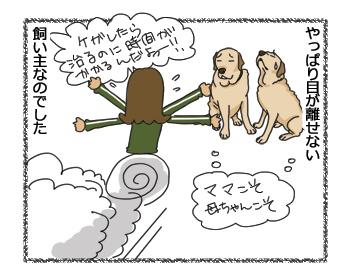 羊の国のラブラドール絵日記シニア!!「クロエとエビスと保険のハナシ」9