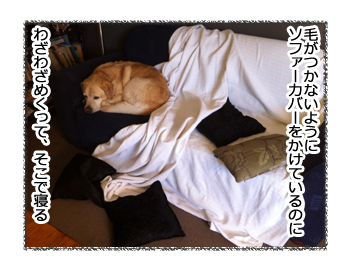 羊の国のラブラドール絵日記シニア!!「売家と犬たち」4