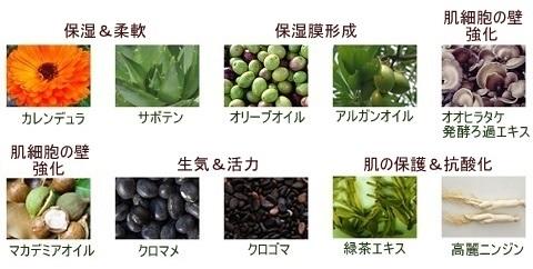 ISOI_アイソイ_ハイドロモイスチャー_エッセンス(3)
