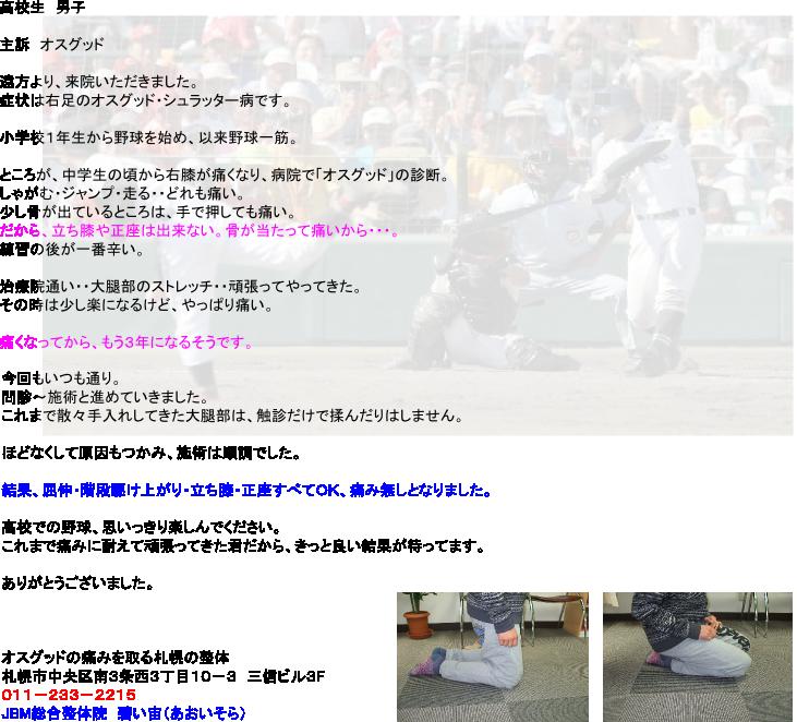 20130421175935d92.png