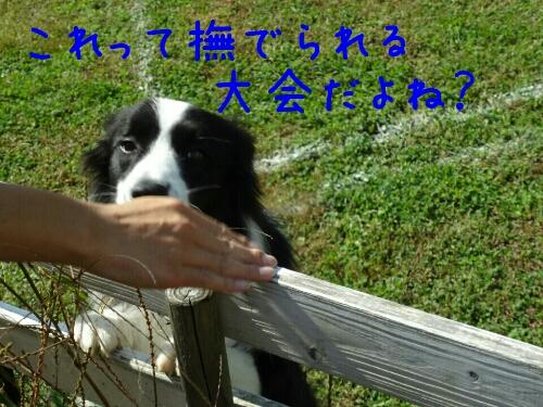 fc2_2013-10-22_00-03-59-438.jpg