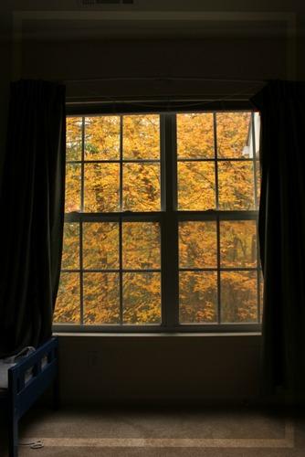 fallview.jpg