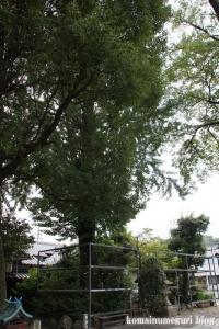 縣神社(京都府宇治市宇治蓮華)56