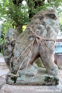 縣神社(京都府宇治市宇治蓮華)50