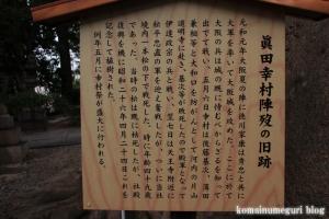 安井神社(大阪市天王寺区逢坂阪)17