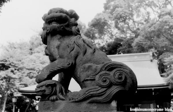 太子堂八幡神社(世田谷区太子堂)1