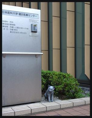 LINEcamera_share_2014-09-21-18-36-38.jpg