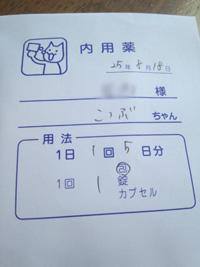 DSC_05920818.jpg