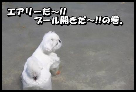 1_20130523144021.jpg