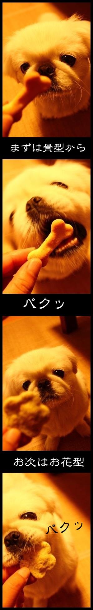 1_2013111910012378a.jpg