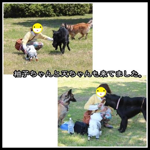 2_20130508125842.jpg