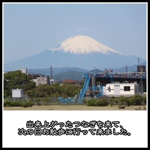 7_20130510155753.jpg