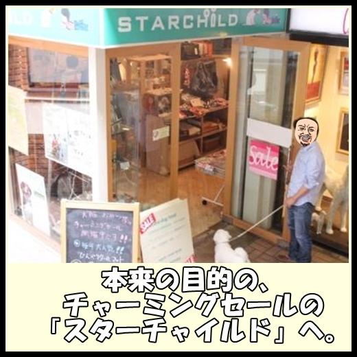 91_20130531162547.jpg