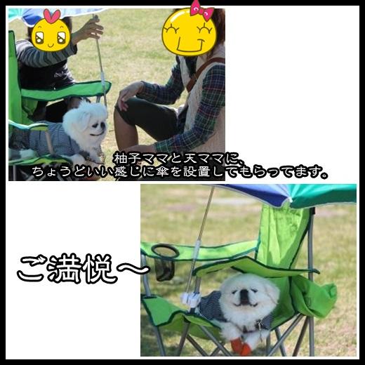 93_20130510155811.jpg