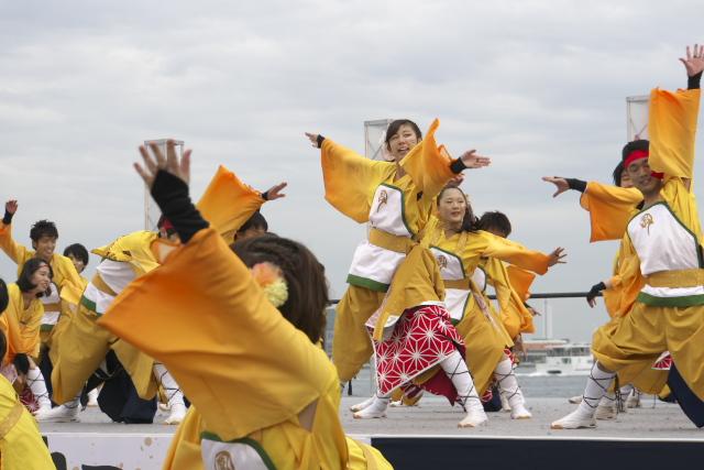 2014 YOSAKOI FESTIVAL 神戸