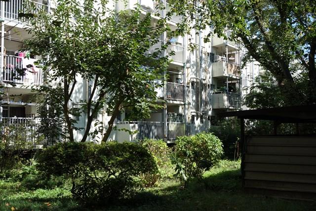 都公社祖師谷住宅の住棟と緑