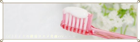 エイジングケア歯みがき サイプラス