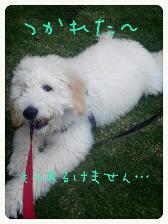 edit_2013-06-30_22-38-48-537.jpg