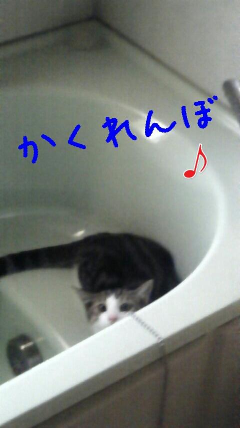 fc2_2013-07-27_18-29-21-202.jpg