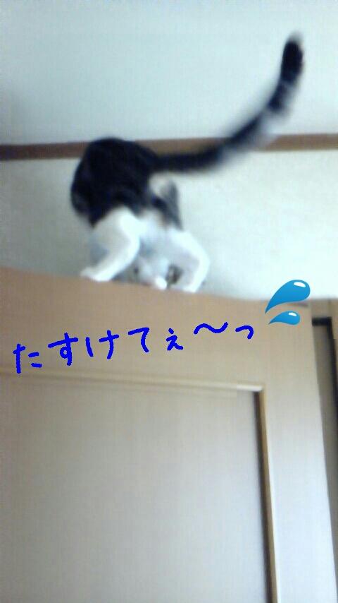 fc2_2013-07-28_17-21-52-359.jpg