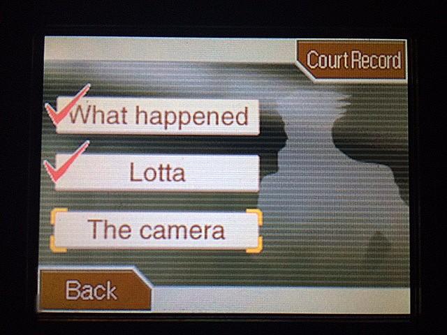 逆転裁判 北米版 湖のそばでロッタは何をしてるの?26