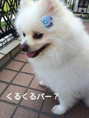 fc2blog_20140918193853fdb.jpg
