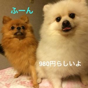 fc2blog_2014092008312187c.jpg