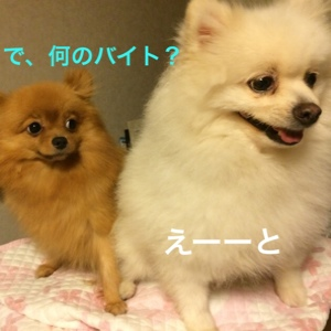 fc2blog_201409202254040eb.jpg