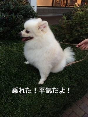 fc2blog_2014100621224628f.jpg