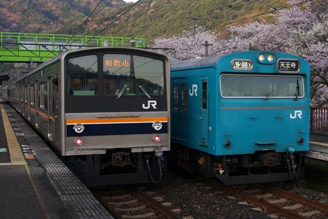 130401-JR-W-hanwa-205-103-sakura-1.jpg