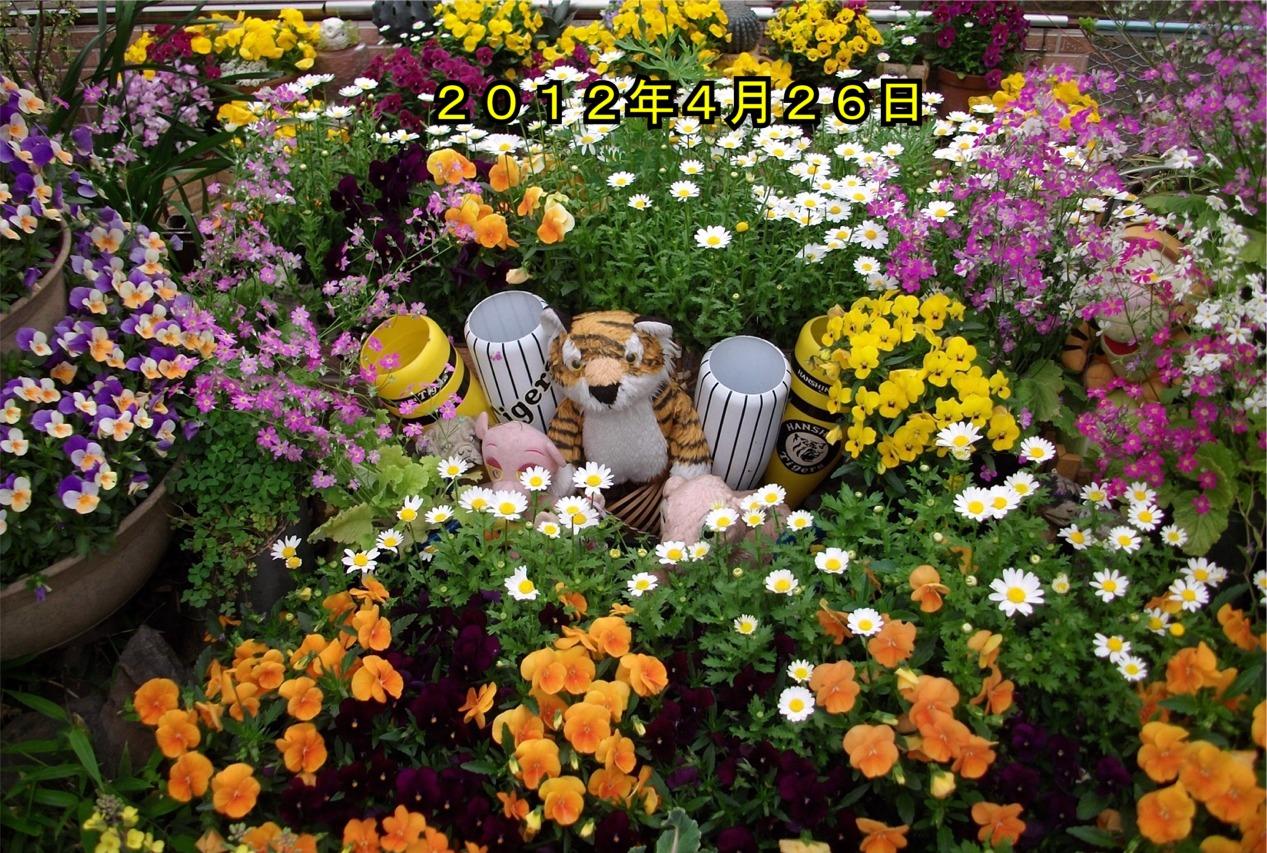 201306301930036e9.jpg