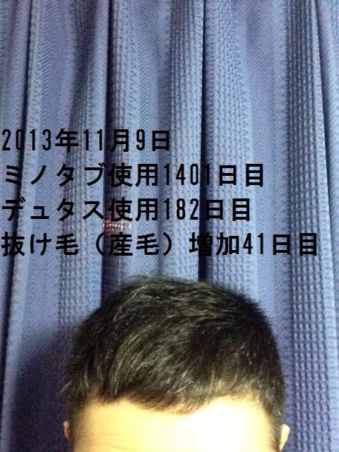 2013110921471327c.jpg
