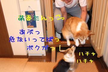 201311141322530bb.jpg