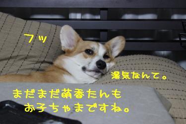 201311192231205d0.jpg