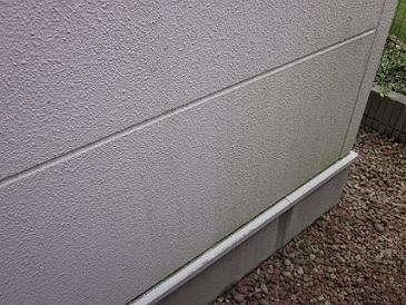 台風明けに外壁のコケ掃除