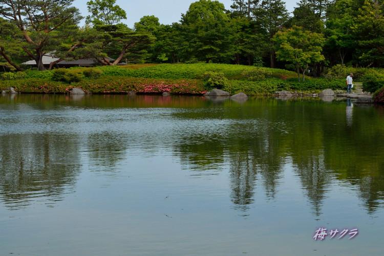 昭和記念公園撮影実習2(2)変更済