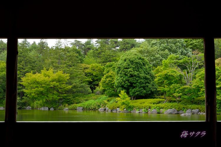 昭和記念公園撮影実習2(3)変更済
