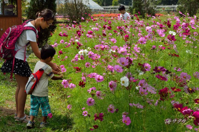 花の都公園1(6)変更済