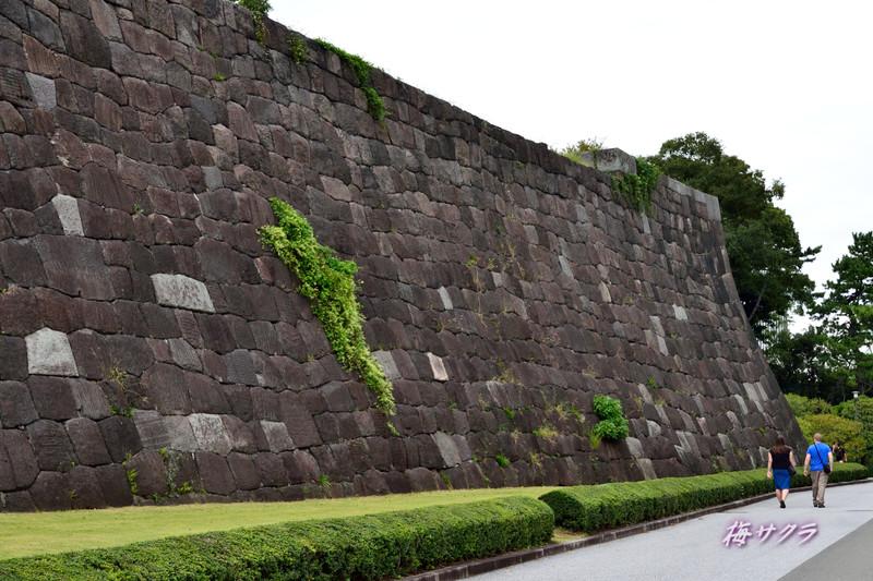 江戸城1(7)変更済