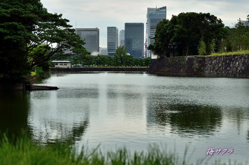 東京巡り1変更済