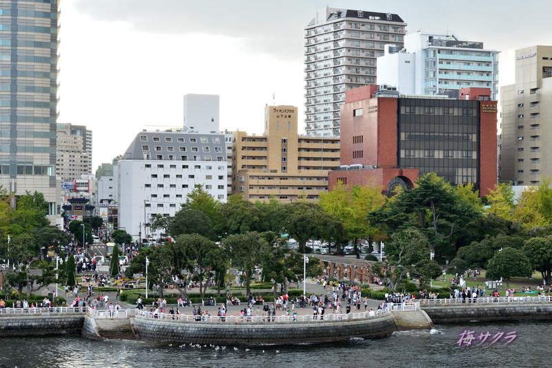 横浜1(1)変更済