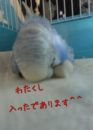 fc2_2013-10-26_16-01-30-705.jpg