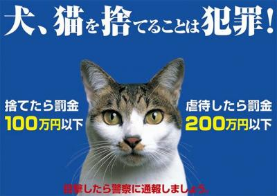 130831_neko_posters.jpg