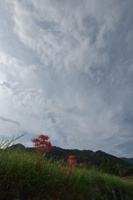2014-09-22_7633-430.jpg
