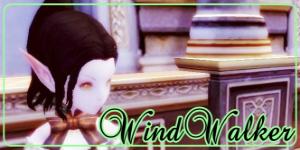 S_WindWalker.jpg