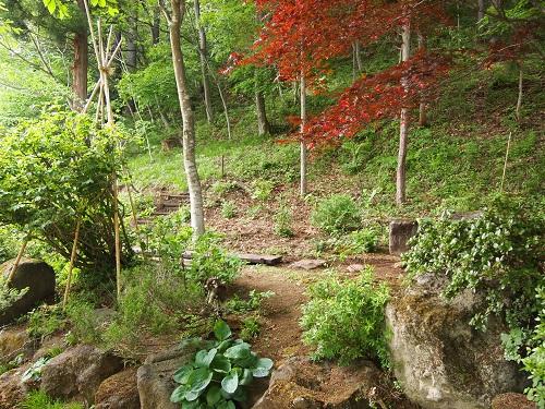 kaihoukannari3.jpg