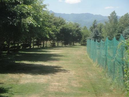 s-前田森林公園PG (4)