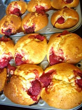 muffin516.jpg