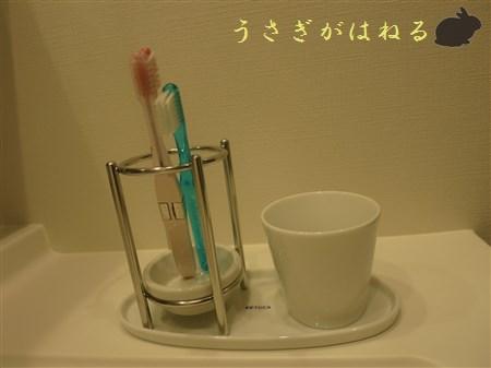 【B級品】キキョウ 白磁歯ブラシスタンド