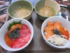 wakayama_32.jpg